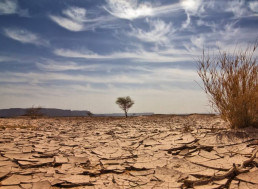 Climate Criminals: Thieves Steal 300,000 Liters of Water from Australian Drought-hit Area