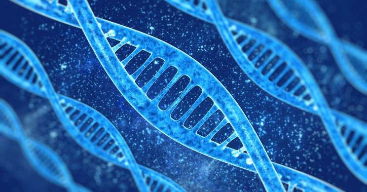Scientists Develop New Scalable DNA-Based Data Storage System