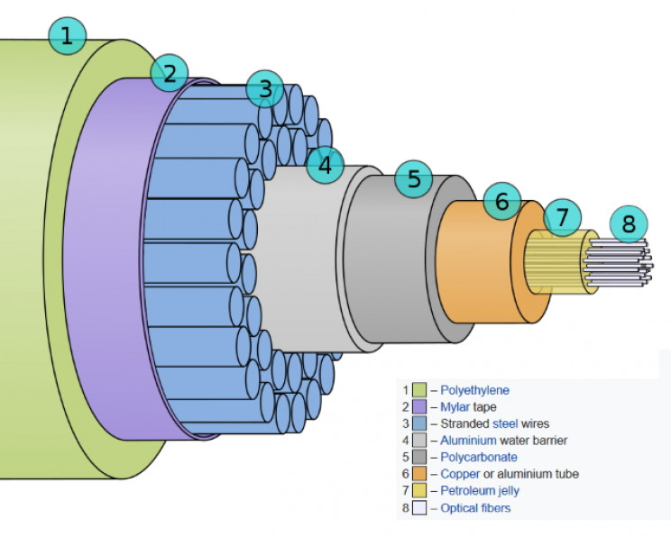 Cross section of a fiber-optic cable
