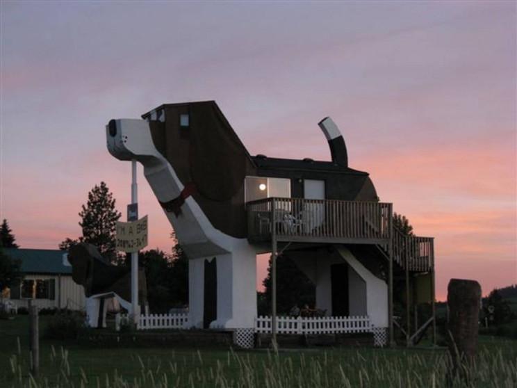 Doggo Heaven: Dog-loving Couple Designed a Beagle-shaped B&B