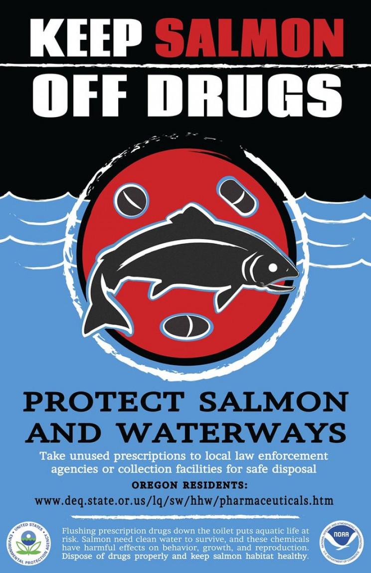 keep salmon off drugs
