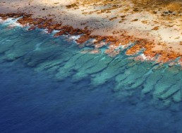 Scientists Produce First-ever Global Coral Reef Atlas