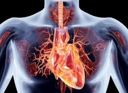 NASA Inventions Used for Heart Health