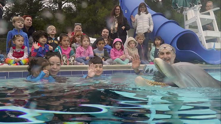 Life-Like Robotic Dolphin to Overhaul Marine Captivity Industry