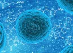 Scientists Create a Genetically Modified Virus That Can Combat Prostate Cancer