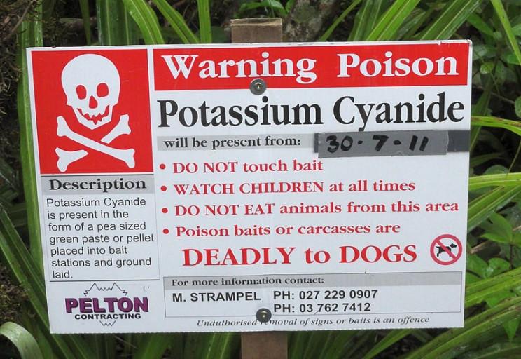 most dangerous chemicals potassium cyanide
