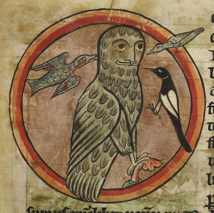 This Is How Medieval Artists Imagined Animals They Had Never Seen