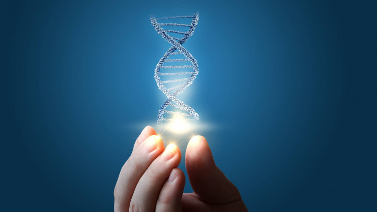 New Study Sequences 64 Full Human Genomes From Around the Globe