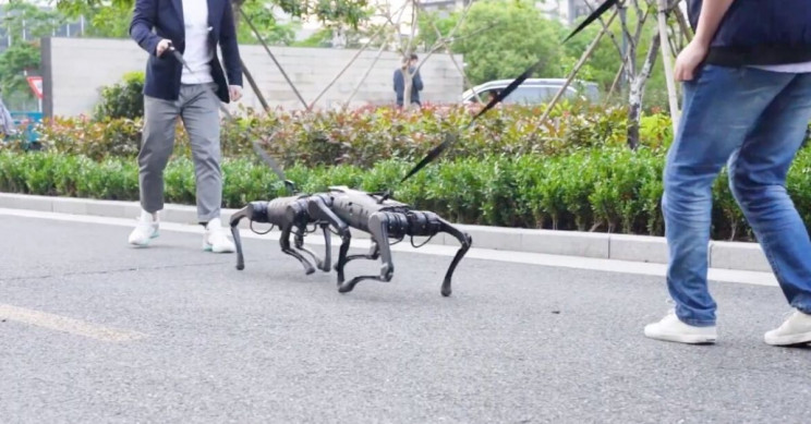 These Two Robot Dogs Keep Fighting Like Real Dogs