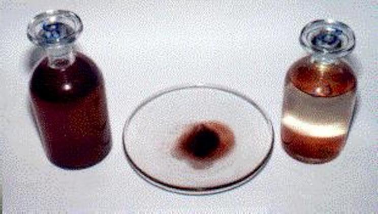 Blood rain sample