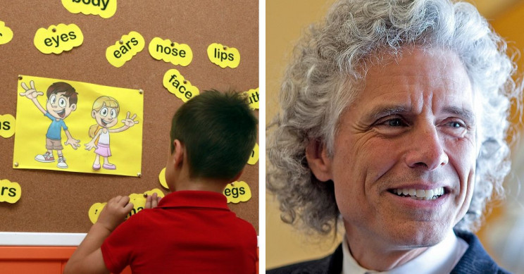 Who Is Professor Steven Pinker and Why Is He Famous?