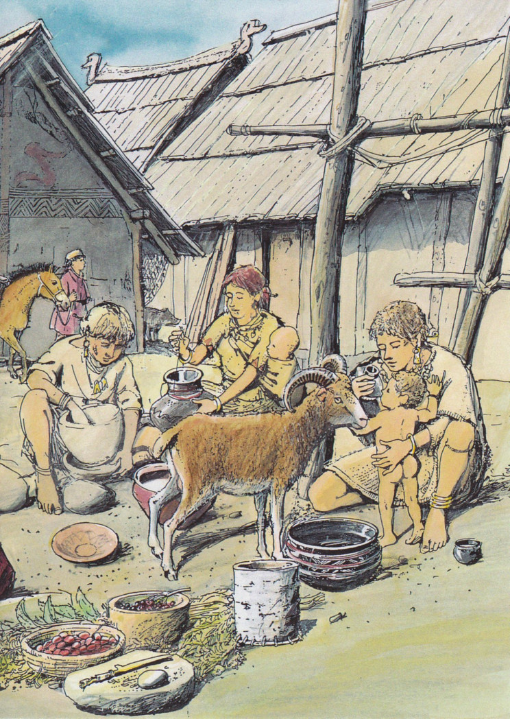 Prehistoric Babies Drank Milk out of Bottles Too, Archaeological Study Finds
