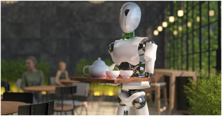 Human Attitudes toward the Robot in the Room