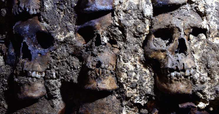 Mexico's tower of skulls yields more ancient remains
