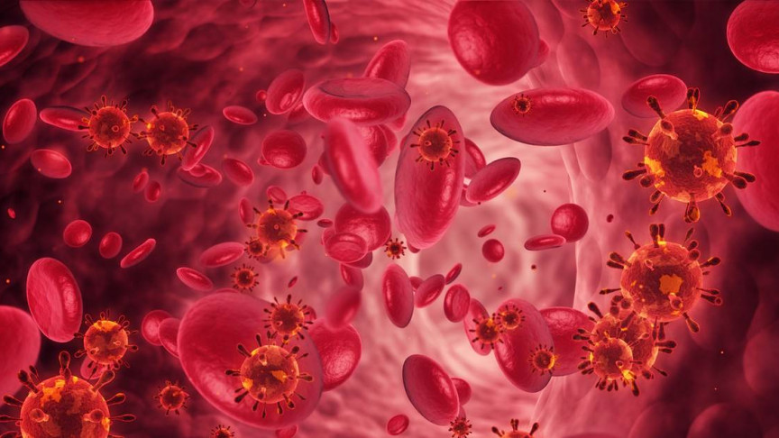 New Israeli Cancer Treatment Has a 100% Tumor Shrinkage Rate