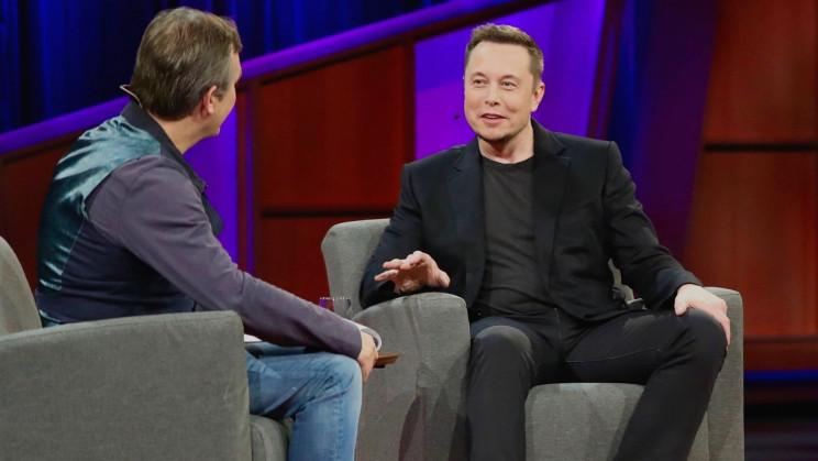 Elon Musk Postulates That Cat-Poop Brain Parasite Is the True Arbiter of Our Destiny