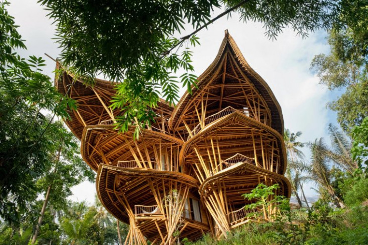 15+ Amazing Things You Can Do with Bamboo