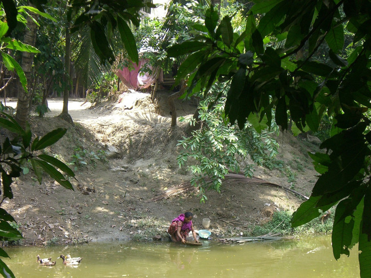 woman getting water from polluted river