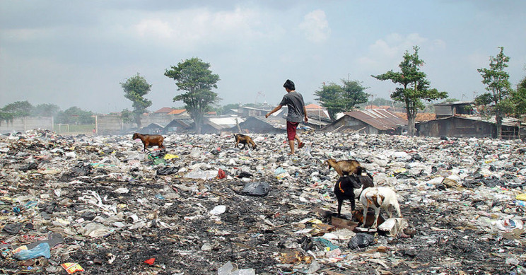 The Devastating Waste Management Problems That Plague India