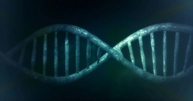 A Team of Researchers Has Developed Self-healing DNA Nanostructures