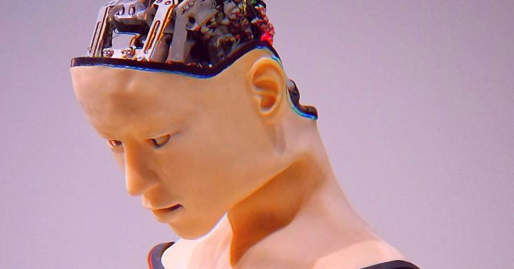 New Customized 'Brains' for Robots Under Development, Says MIT Scientist