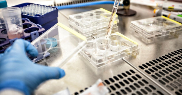 New Vaccine Keeps Cancer Cells Under Control Four Years After Treatment
