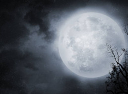 This Friday, Don't Miss the Full Wolf Moon Eclipse