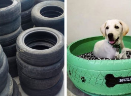 Brazilian Man Upcycles Old Tires and Turns Them Into Adorable Animal Beds