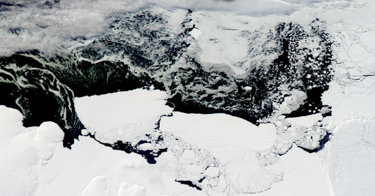 Solving the Mystery of Antarctic Polynyas