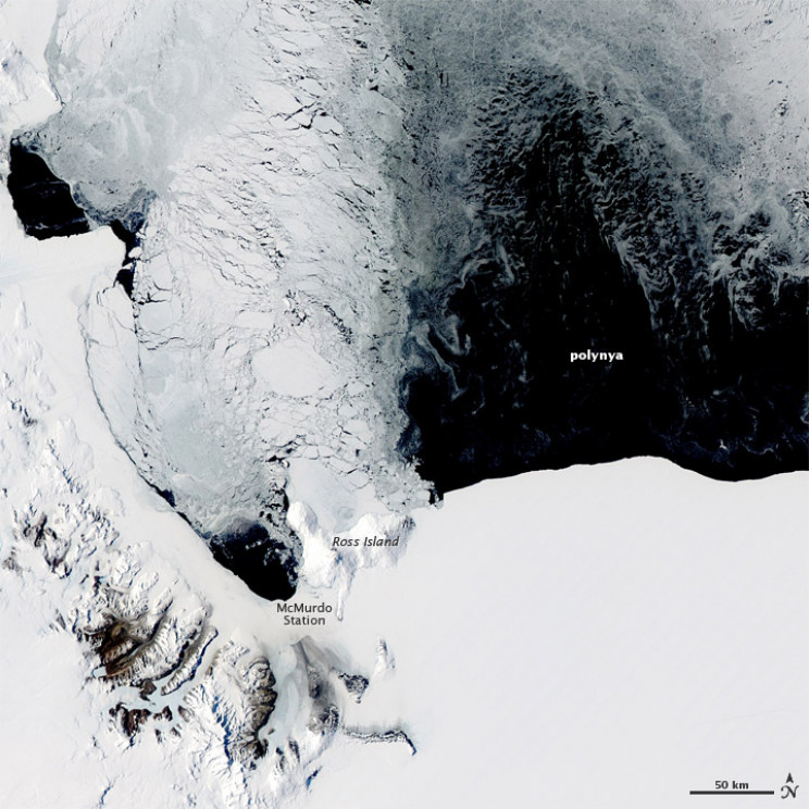 Polynya Observed in Antarctica