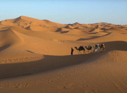 This Is What Would Happen If We Covered the Sahara With Solar Panels