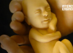 The Miracle and Science of Life from Conception to Birth
