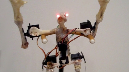 Watch Creepy Cyborg Chickens Fighting in an Epic Battle of Claws