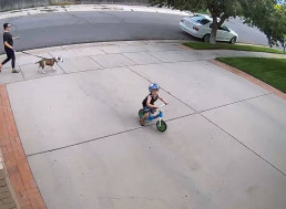Neighbor Takes Action After Kid Keeps Riding His Bicycle in His Driveway