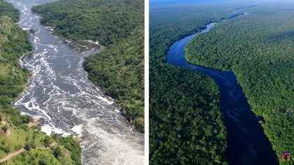 Why Is It Near Impossible to Determine the Longest River on Earth?
