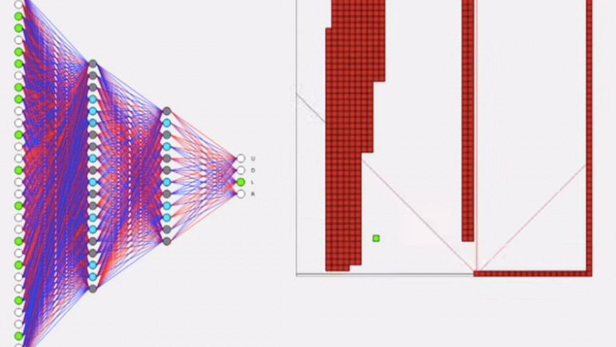See with Your Own Eyes: AI Learning How to Play Snake