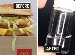 Mad Scientist Purifies a Big Mac from McDonald's