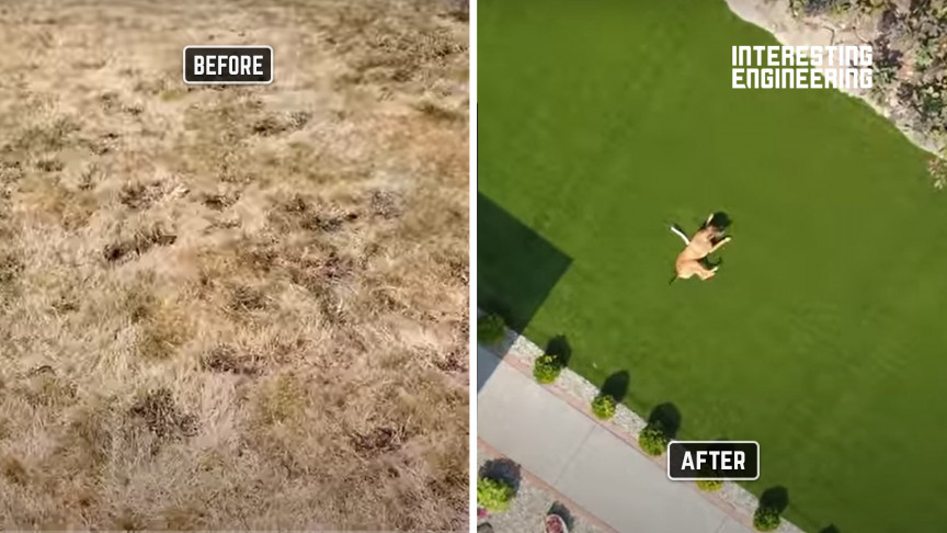 How to Raise Your Lawn Game With Synthetic Turf Grass