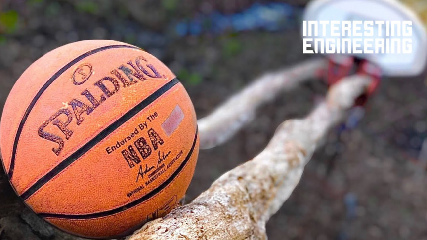 Check out This 70-Step Basketball Trickshot Rube Goldberg Machine