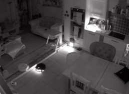 This is What Robot Vacuums Do When You Sleep