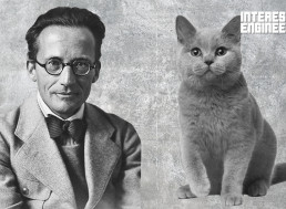 Schrödinger's Cat Explained So You Can Finally Understand It